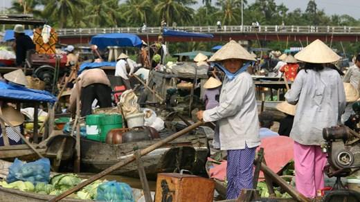 dk destinationer vietnam spoergsmaal om vietnam oplevelser i vietnam
