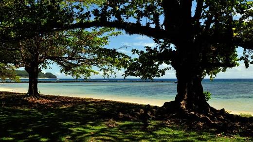 Billige rejser til Samoa - Backpacking med KILROY